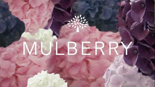 mulberryfilm