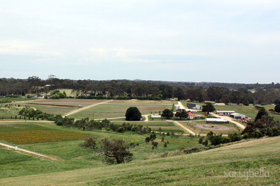 jurlique_farm_adelaide_01